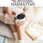 FAMILY || 7 TIPS FOR SURVIVING HARMATTAN